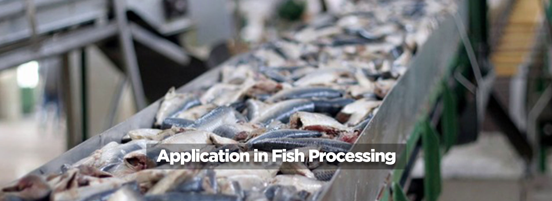 Application in Fish Processing